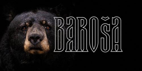 Barosa.jpg
