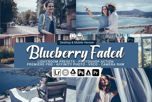 Blueberry faded.jpg