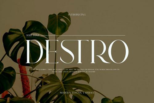 Destro.jpg