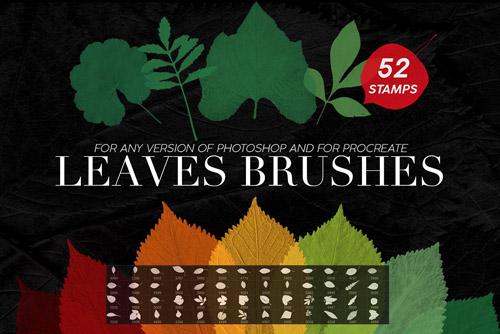 Leaves Stamp Brushes.jpg
