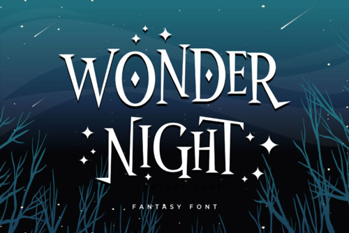 Wonder Night.jpg